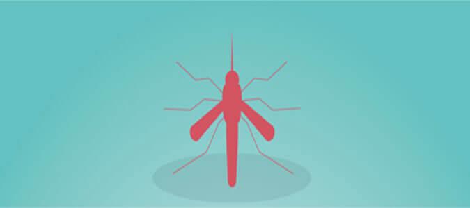 beware dengue fever